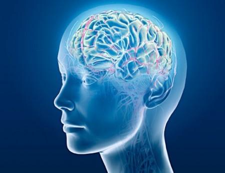 CIA do Cérebro